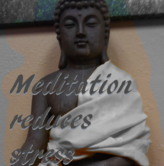Meditation training and practice