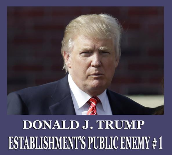 Donald J. Trump, public enemy of the establishment