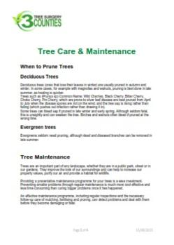 Lichfield Tree Surgeon, Lichfield Tree Surgery, Walsall Tree Surgeon, Sutton Coldfield Tree Surgeon