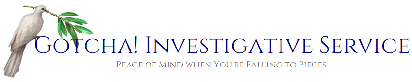 Private Invetigator York PA | Infidelity Investigator York PA