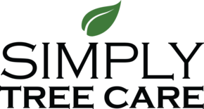Simply Tree Care providing tree services including tree trimming and tree removal in Omaha NE