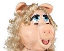Hire Miss Piggy, Muppet style Party Character