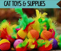 Cat toys & supplies at Golf Rose Pet Store | Golf Rose Animal Services