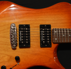 wt. Foster Guitars F5001 Standard 2015 Sunset burst