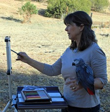 Plein Air pastelist Lindy Cook Severns and parrot painting buddy at work