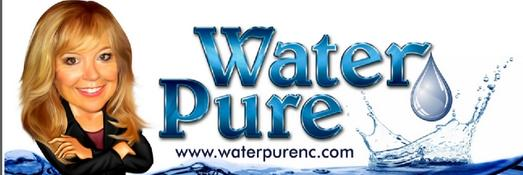 A Complete Pump  Water Pure, LLC