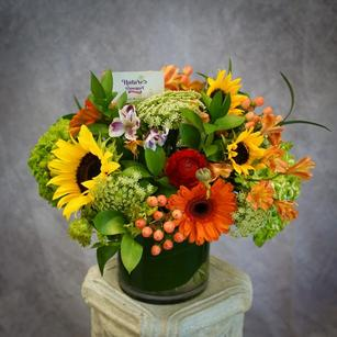 Glass vase arrangement with sunflowers, gerbera daisies and hydrangea designed cylinder vase.