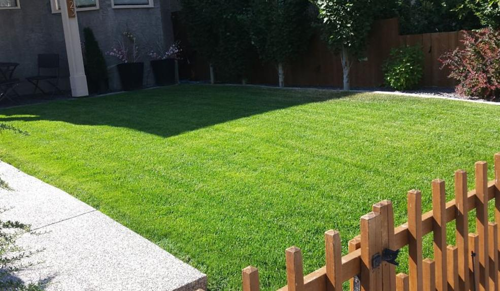 Benefits of Weekly Lawn Service | FT Property Services Inc. | Calgary, Alberta