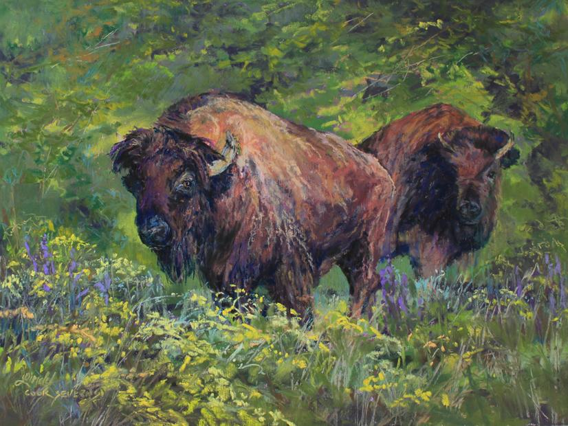 Roaming A Land of Plenty, pastel wildlife painting of American Bison by Texas artist Lindy C Severns