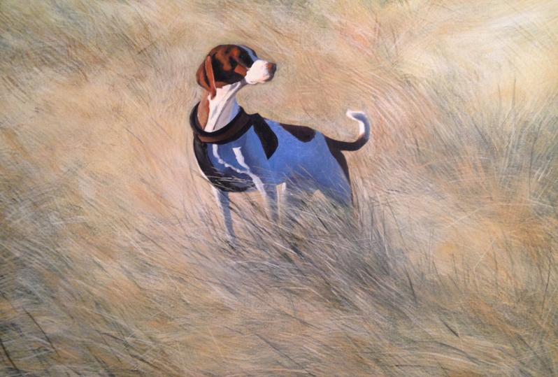 Orfhlaith Egan Irish Artist based in Berlin. Original Acrylic Painting. Dog painting. Commission. Private Collection.