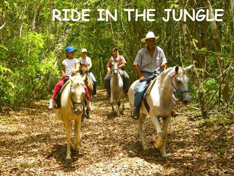 Four people riding horse back in the Belize rain forest. Best Belize Vacations