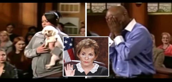 An Emotional judgment by Judge Judy The dog chooses his real owner in court