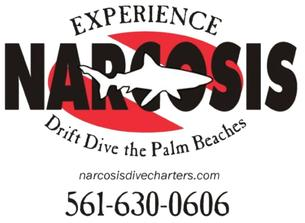 Narcosis Drift Dive the Palm Beaches