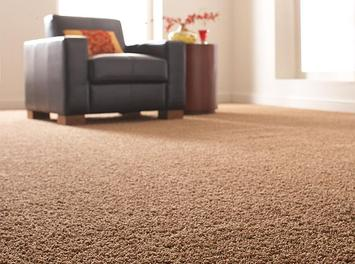 https://theflooringblog.com/5-reasons-to-get-rid-of-your-wall-to-wall-carpeting/