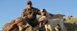 Coyote Hunting with Dogs