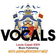 Vocals, Music with people singing, EDM Electronci Dance Music & Rock