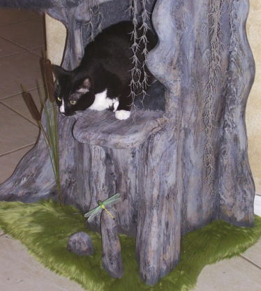 Old Cypress Cat Condo
