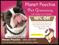 dog grooming discount coupons