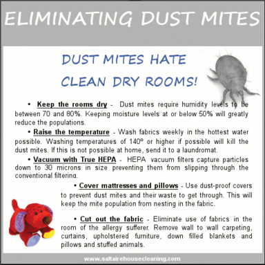 How to eliminate dust mites