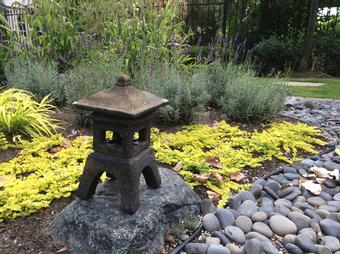 Japanese Garden in Richmond Hill, Aurora