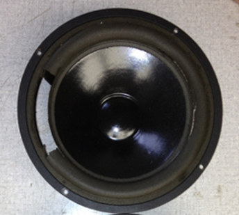 Snell Speaker with Foam Rot