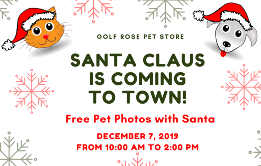 Golf Rose Pet Store 2019 Santa | Golf Rose Animal Services