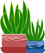Potted Plant Pixabay graphic