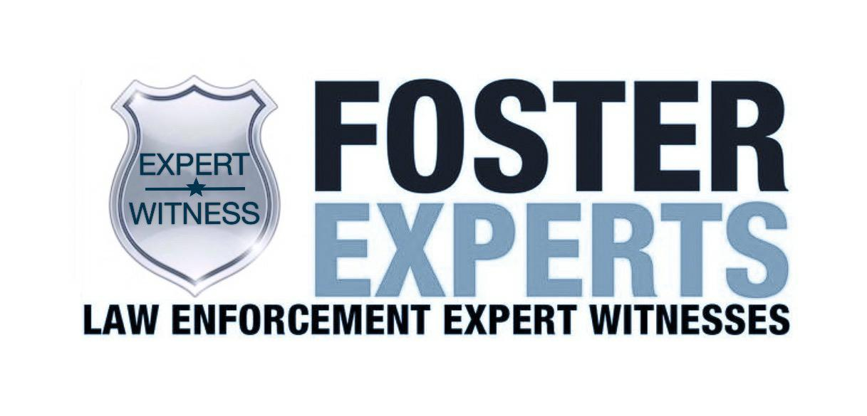 foster experts art 1217x585