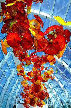 CHIHULY SEATTLE