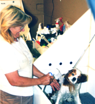 Lucky Dog Pet Salon, Professional Pet Grooming