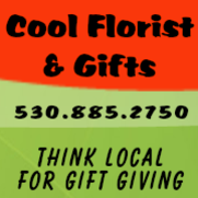 Cool Florist & Gifts, Think Local for Gift giving