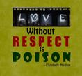 Quote: Love without respect is POISON. Quote Author & Artist: Elizabeth Medina