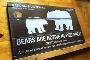 rustic wood sign - bears are active in this area