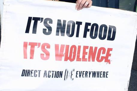its not food its violence