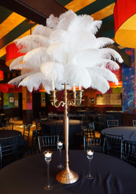 Rent Ostrich Feather candelabras centerpieces Los Angeles California