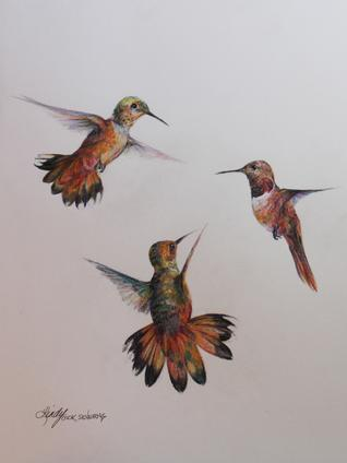 Flight, hummingbirds original colored pencil drawing by Fort Davis Texas artist Lindy Cook Severns