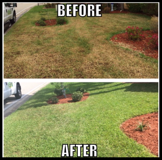 Green Smart Lawn Care In Fort Myers Fl  Services