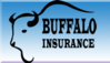 Buffalo Insurance Agency Arkansas