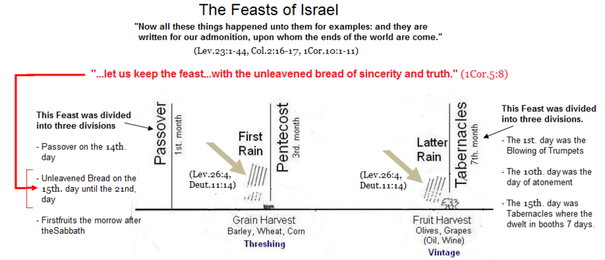 BIBLE LANGUAGE / Unleavened Bread