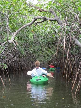 Two women kayak along Black Water Creed and into Black Water Lagoon on the Southern Lagoon Explore excursion at Leaning Palm Resort in Belize. Belize Adventure Tours