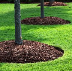 Richmond Mowing - Mulching Lawn Care