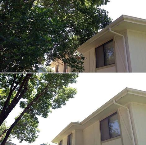 A before and after of maintenance tree pruning to elevate branches off of a roof for an Omaha NE customer