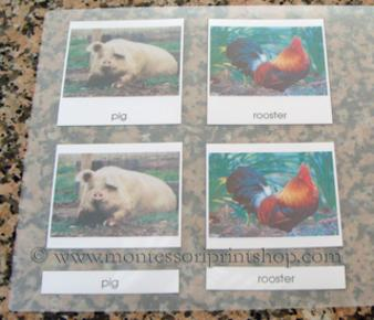 laminating montessori 3-part classified cards