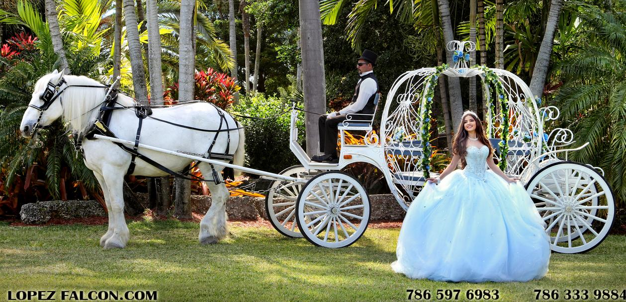 quinceanera with horse caruaje para quinces con caballo quinces miami