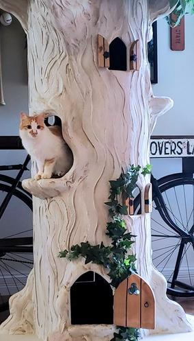Large Cat Towers that look like Trees