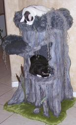 Cypress Cat Tree