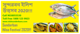 Food Themed Sundarban Tour Package