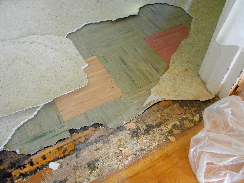 Asbestos flooring abatement alternative option vat vinyl asbestos tile flooring dailygadgetfo Images