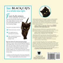 Black Cats Tell All Back Cover