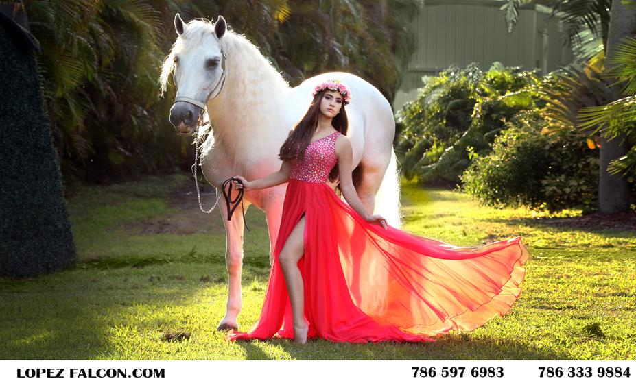 quince dresses quinceanera dress quinces with horses in miami